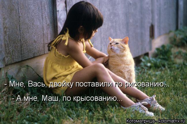 Котоматрица: - Мне, Вась, двойку поставили по рисованию... - А мне, Маш, по крысованию...