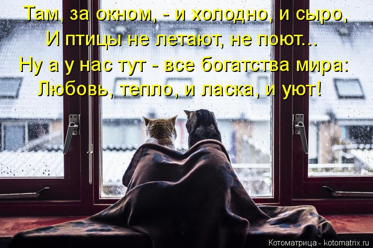 Котоматрица: Там, за окном, - и холодно, и сыро, И птицы не летают, не поют... Ну а у нас тут - все богатства мира: Любовь, тепло, и ласка, и уют!