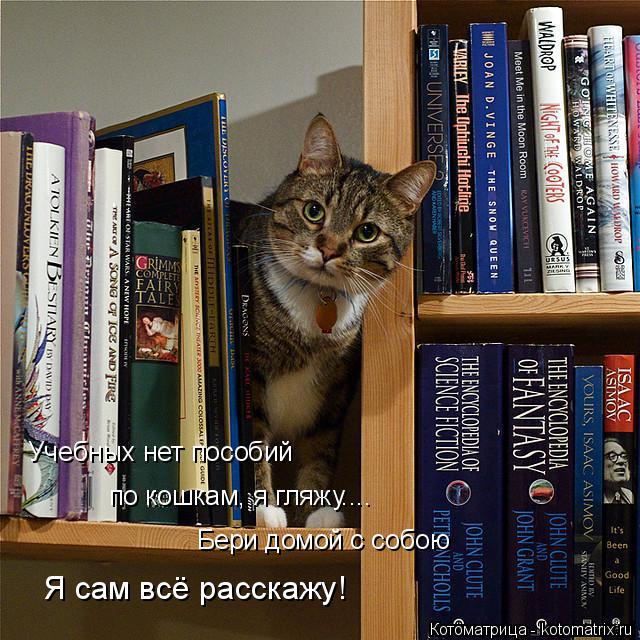 Котоматрица: Учебных нет пособий по кошкам, я гляжу.... Бери домой с собою Я сам всё расскажу!