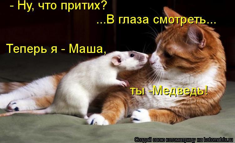 Котоматрица: - Ну, что притих? ...В глаза смотреть... Теперь я - Маша, ты -Медведь!