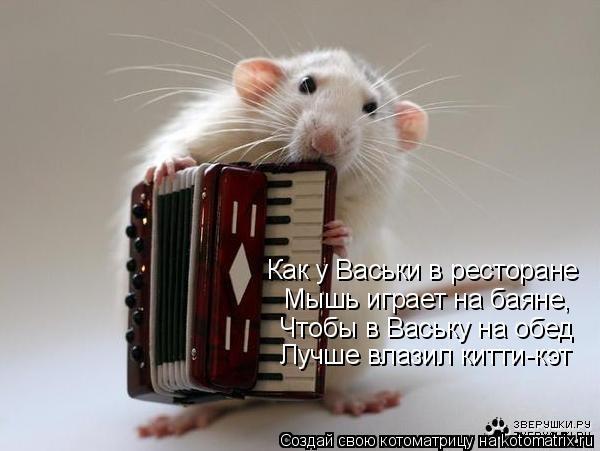 Котоматрица: Как у Васьки в ресторане Мышь играет на баяне, Чтобы в Ваську на обед Лучше влазил китти-кэт