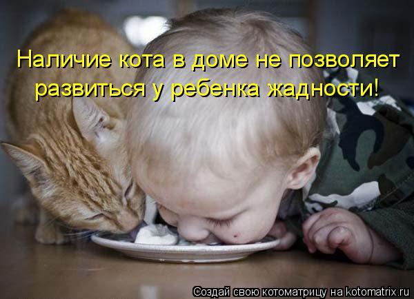 Котоматрица: Наличие кота в доме не позволяет развиться у ребенка жадности!