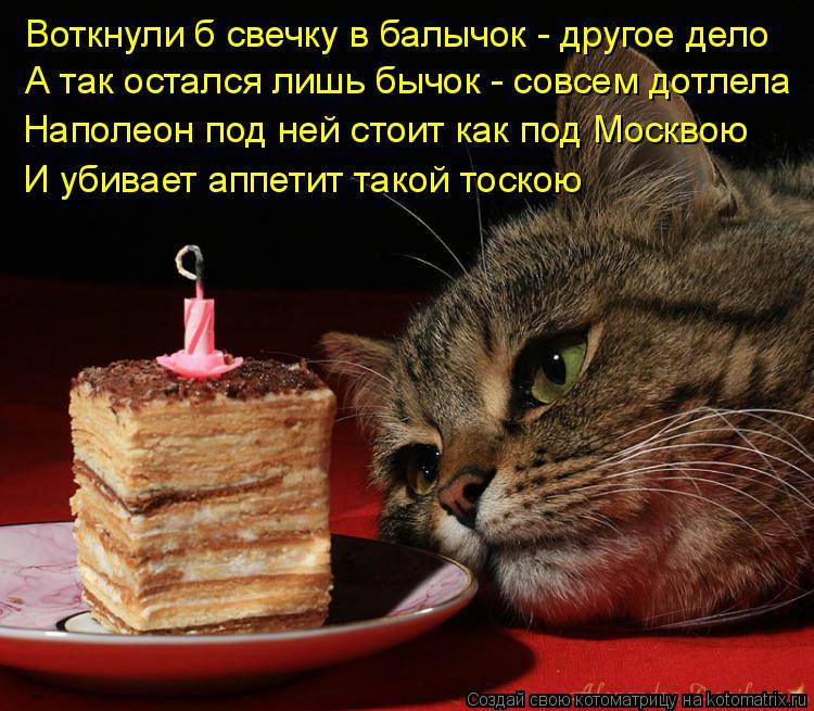 Котоматрица: Наполеон под ней стоит как под Москвою И убивает аппетит такой тоскою А так остался лишь бычок - совсем дотлела Воткнули б свечку в балычок -