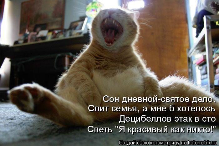 """Котоматрица: Сон дневной-святое дело. Спит семья, а мне б хотелось Децибеллов этак в сто Спеть """"Я красивый как никто!"""""""