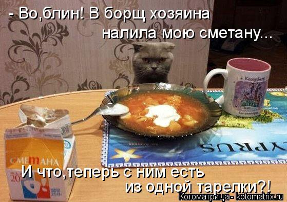 Котоматрица: - Во,блин! В борщ хозяина налила мою сметану... из одной тарелки?! И что,теперь с ним есть