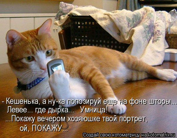 http://kotomatrix.ru/images/lolz/2016/05/24/kotomatritsa_N9.jpg