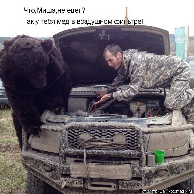 Котоматрица: Что,Миша,не едет?- Так у тебя мёд в воздушном фильтре!