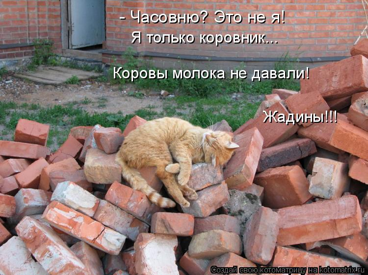http://kotomatrix.ru/images/lolz/2016/05/25/kotomatritsa_9.jpg