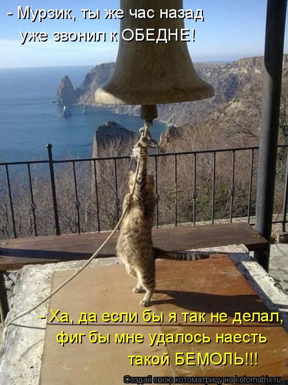 Котоматрица: - Мурзик, ты же час назад уже звонил к ОБЕДНЕ! - Ха, да если бы я так не делал, фиг бы мне удалось наесть такой БЕМОЛЬ!!!