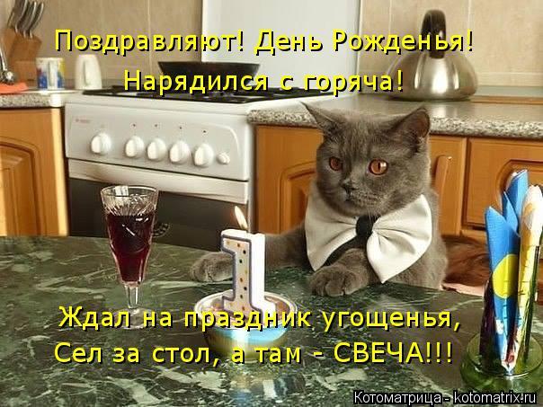 Котоматрица: Поздравляют! День Рожденья! Нарядился с горяча! Ждал на праздник угощенья, Сел за стол, а там - СВЕЧА!!!