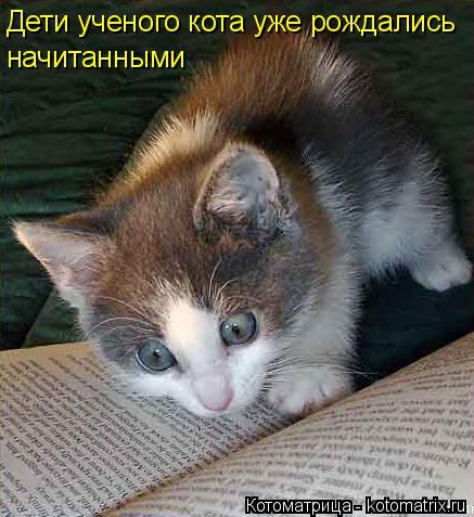Котоматрица: Дети ученого кота уже рождались  начитанными