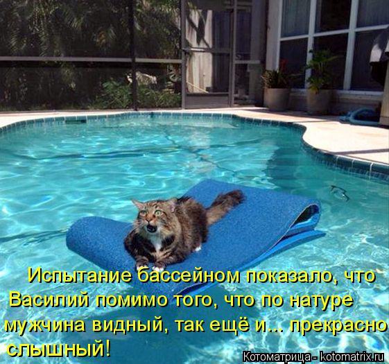 Котоматрица: Испытание бассейном показало, что Василий помимо того, что по натуре  мужчина видный, так ещё и... прекрасно слышный!