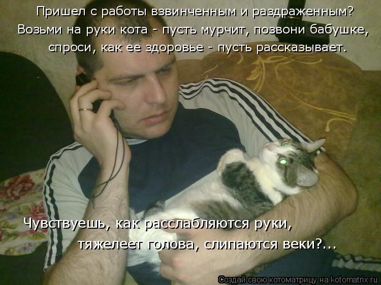 Котоматрица: Пришел с работы взвинченным и раздраженным? Возьми на руки кота - пусть мурчит, позвони бабушке,  спроси, как ее здоровье - пусть рассказывае