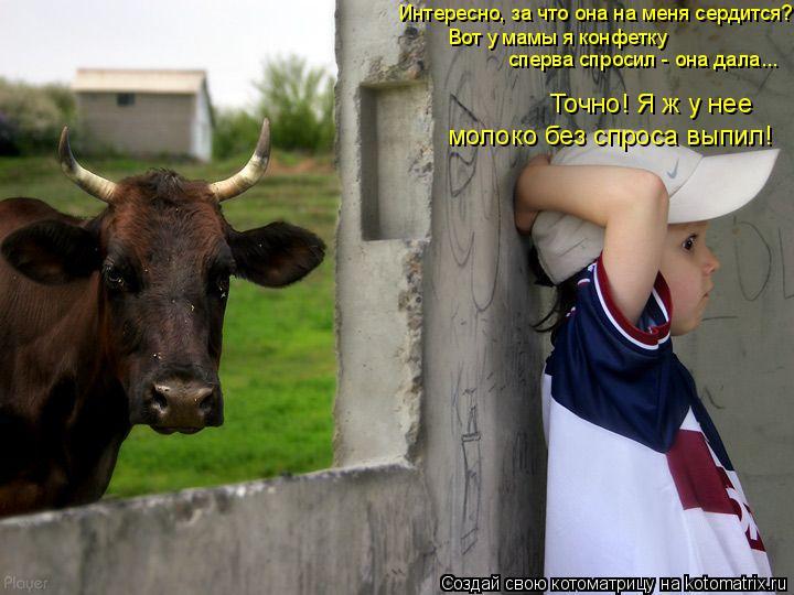 Котоматрица: молоко без спроса выпил! Точно! Я ж у нее  сперва спросил - она дала... Интересно, за что она на меня сердится? Вот у мамы я конфетку
