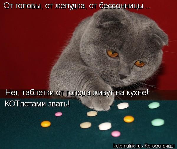 Котоматрица: Нет, таблетки от голода живут на кухне! КОТлетами звать! От головы, от желудка, от бессонницы...