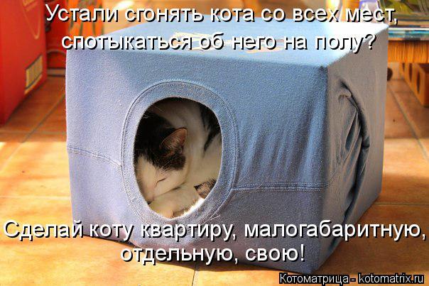 Котоматрица: Устали сгонять кота со всех мест,  спотыкаться об него на полу? Сделай коту квартиру, малогабаритную, отдельную, свою!