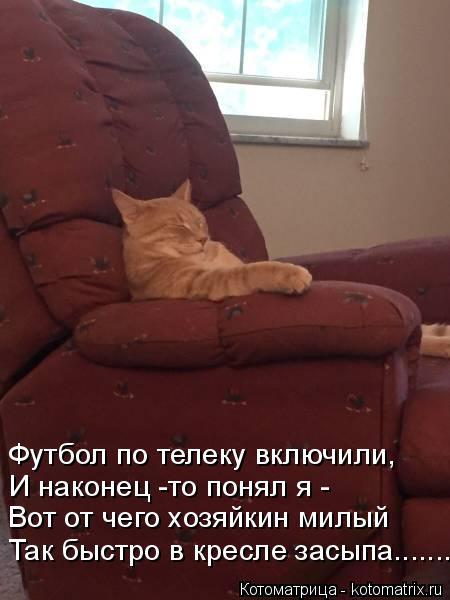 Котоматрица: Так быстро в кресле засыпа.......... Вот от чего хозяйкин милый И наконец -то понял я - Футбол по телеку включили,