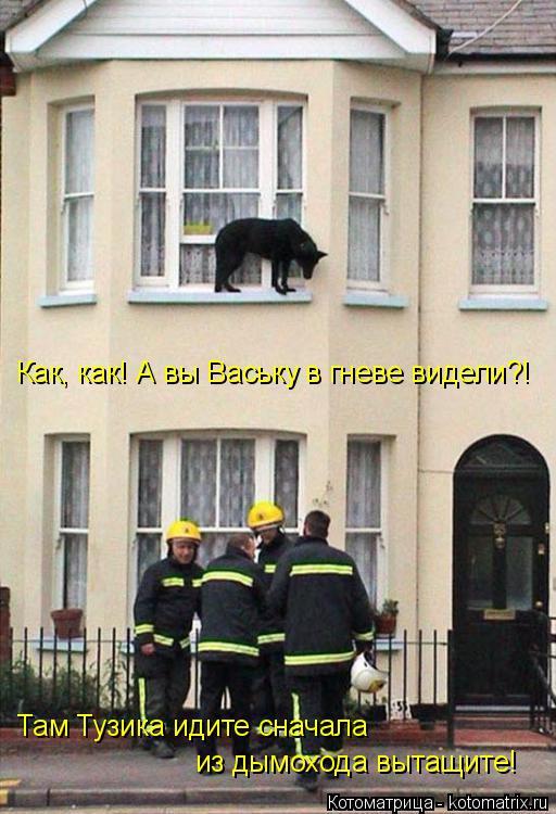Котоматрица: Как, как! А вы Ваську в гневе видели?! Там Тузика идите сначала  из дымохода вытащите!