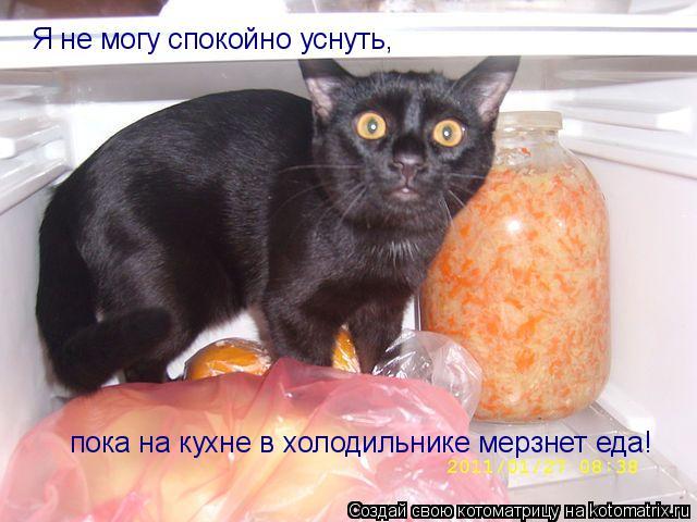 Котоматрица: Я не могу спокойно уснуть,  пока на кухне в холодильнике мерзнет еда!