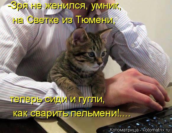 Котоматрица: -Зря не женился, умник, на Светке из Тюмени, теперь сиди и гугли, как сварить пельмени!....