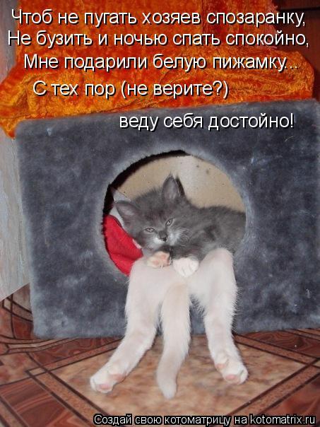 Котоматрица: Чтоб не пугать хозяев спозаранку, Не бузить и ночью спать спокойно, Мне подарили белую пижамку... С тех пор (не верите?)  веду себя достойно!