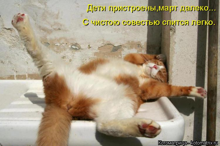 Котоматрица: Дети пристроены,март далеко... С чистою совестью спится легко.