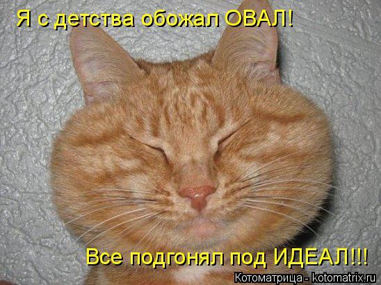 Котоматрица: Я с детства обожал ОВАЛ! Все подгонял под ИДЕАЛ!!!