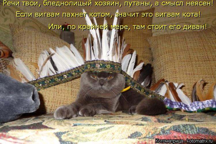 http://kotomatrix.ru/images/lolz/2016/07/06/kotomatritsa_VS.jpg