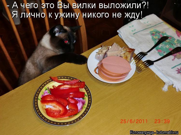 Котоматрица: - А чего это Вы вилки выложили?! Я лично к ужину никого не жду!