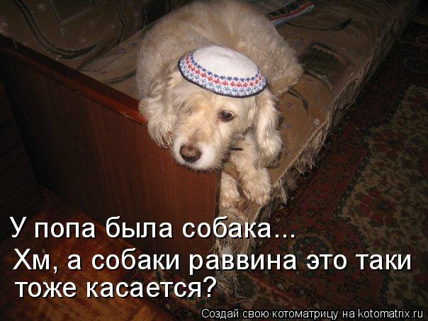 Котоматрица: У попа была собака...  Хм, а собаки раввина это таки тоже касается?