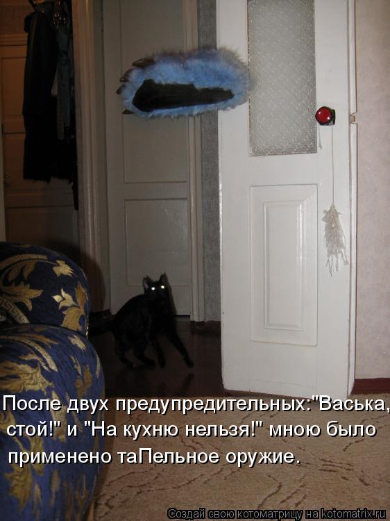 """Котоматрица: После двух предупредительных:""""Васька, стой!"""" и """"На кухню нельзя!"""" мною было применено таПельное оружие."""
