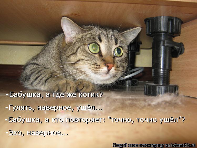 "Котоматрица: -Бабушка, а где же котик? -Гулять, наверное, ушёл... -Бабушка, а кто повторяет: ""точно, точно ушёл""? -Эхо, наверное..."