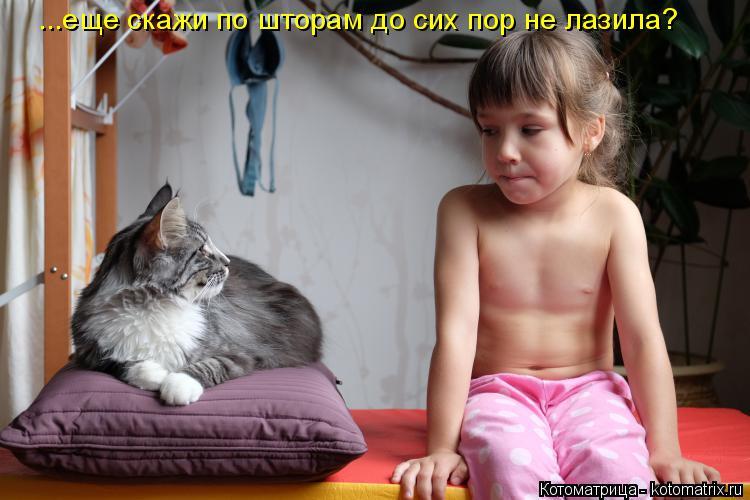 Котоматрица: ...еще скажи по шторам до сих пор не лазила?