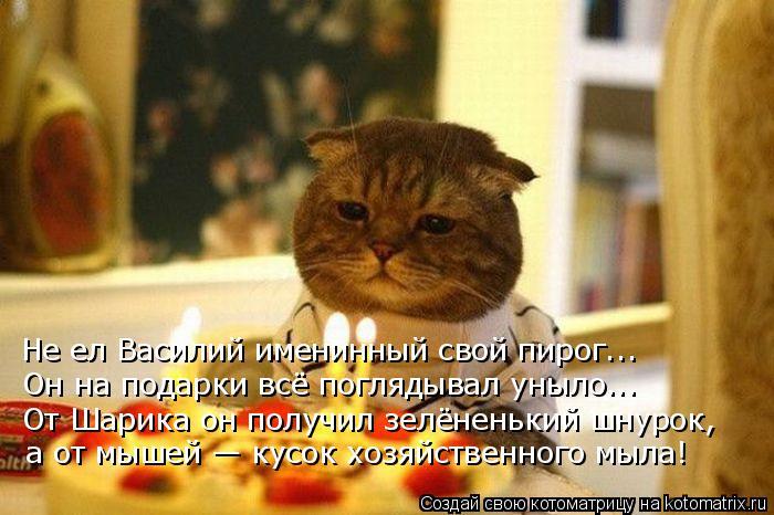 Котоматрица: Не ел Василий именинный свой пирог...  Он на подарки всё поглядывал уныло... От Шарика он получил зелёненький шнурок, а от мышей — кусок хозяй