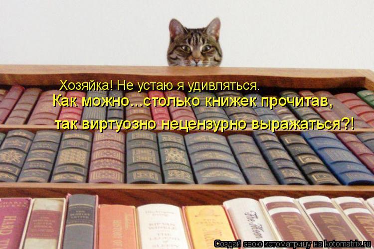 Котоматрица: Хозяйка! Не устаю я удивляться. Как можно...столько книжек прочитав, так виртуозно нецензурно выражаться?!