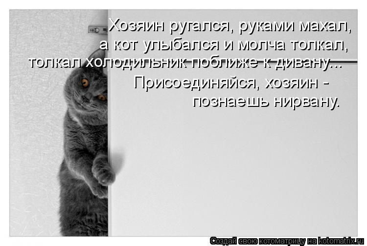 Котоматрица: Хозяин ругался, руками махал, Присоединяйся, хозяин - познаешь нирвану.  а кот улыбался и молча толкал, толкал холодильник поближе к дивану...