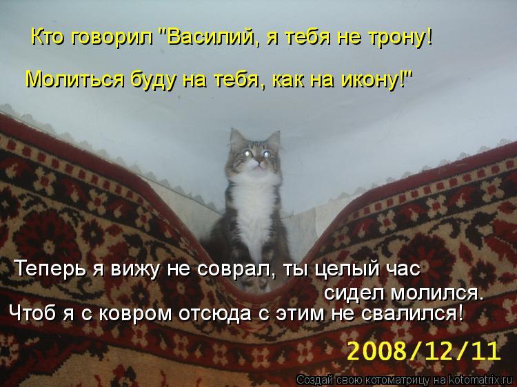 """Котоматрица: Кто говорил """"Василий, я тебя не трону! Молиться буду на тебя, как на икону!"""" Теперь я вижу не соврал, ты целый час  сидел молился. Чтоб я с ковро"""