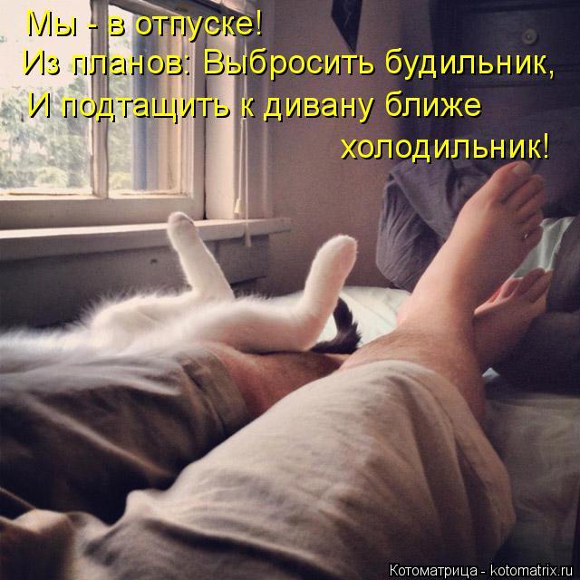 Котоматрица: Мы - в отпуске!  И подтащить к дивану ближе  холодильник! Из планов: Выбросить будильник,