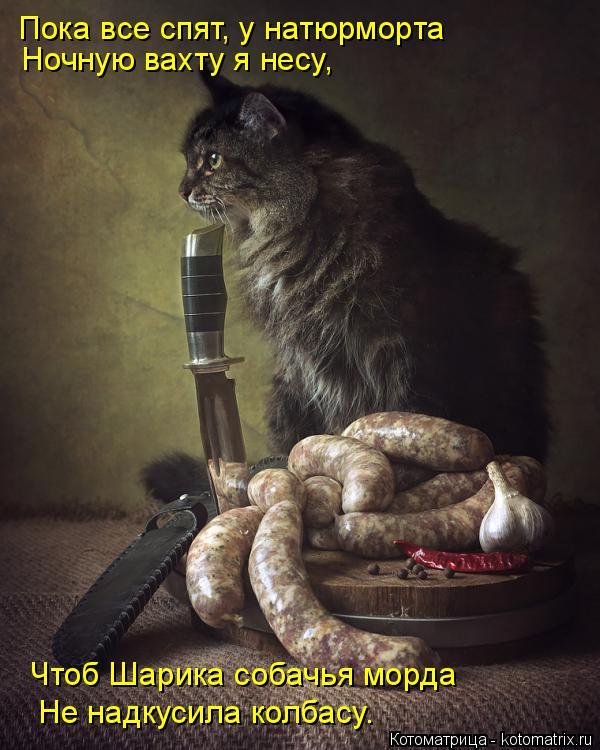 Котоматрица: Пока все спят, у натюрморта Ночную вахту я несу, Чтоб Шарика собачья морда Не надкусила колбасу.