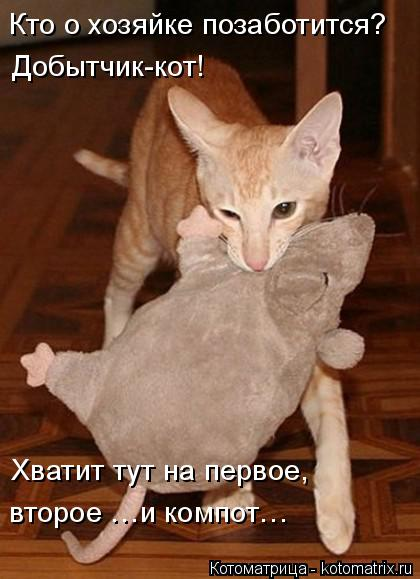 Котоматрица: Кто о хозяйке позаботится? Добытчик-кот! Хватит тут на первое,  второе …и компот…