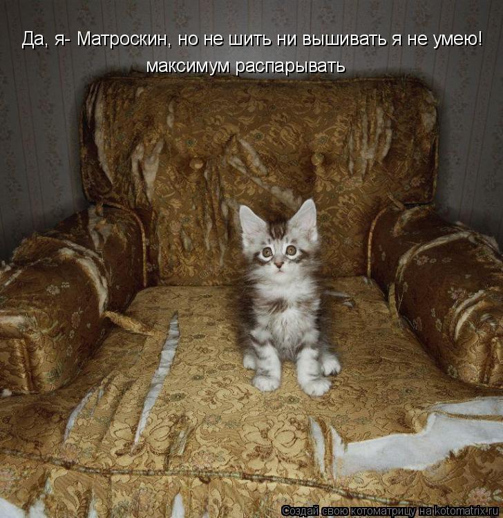 Котоматрица: Да, я- Матроскин, но не шить ни вышивать я не умею! максимум распарывать