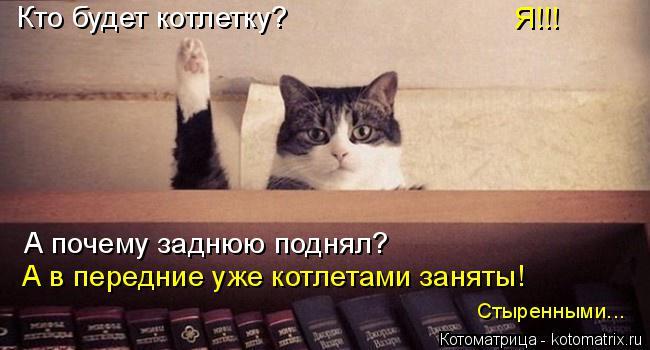Котоматрица: Кто будет котлетку? Я!!! А почему заднюю поднял? А в передние уже котлетами заняты! Стыренными...