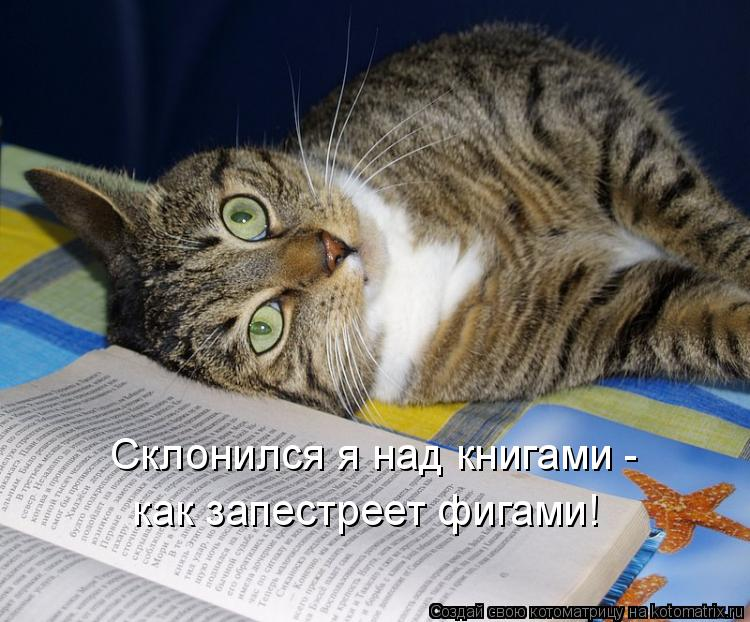 Котоматрица: Склонился я над книгами - как запестреет фигами!