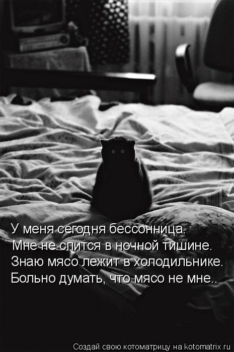 Котоматрица: У меня сегодня бессонница. Мне не спится в ночной тишине. Знаю мясо лежит в холодильнике. Больно думать, что мясо не мне..