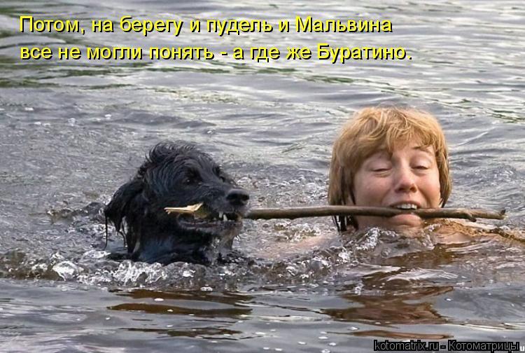 Котоматрица: Потом, на берегу и пудель и Мальвина все не могли понять - а где же Буратино.
