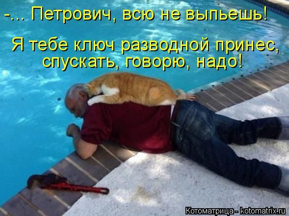 Котоматрица: -... Петрович, всю не выпьешь! спускать, говорю, надо! Я тебе ключ разводной принес,