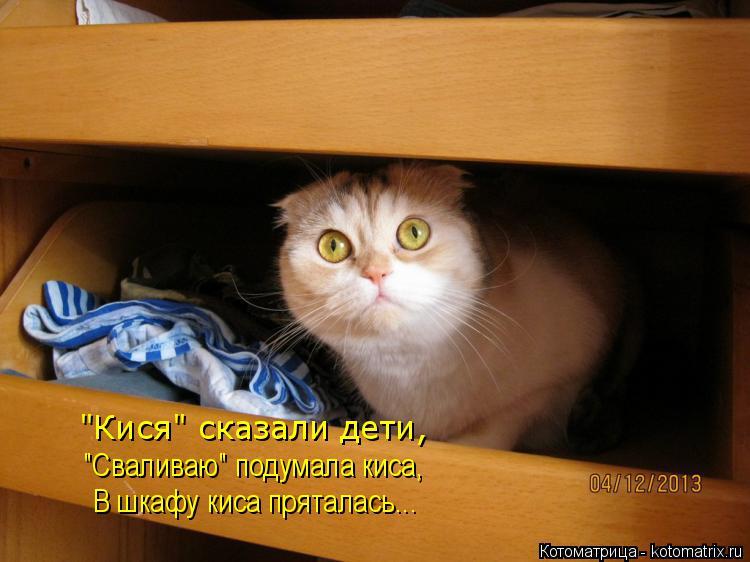 "Котоматрица: В шкафу киса пряталась... ""Сваливаю"" подумала киса, ""Кися"" сказали дети,"