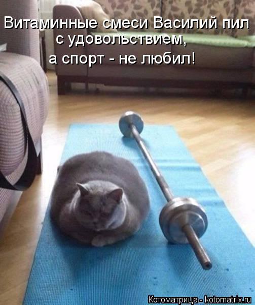 Котоматрица: Витаминные смеси Василий пил  с удовольствием,  а спорт - не любил!