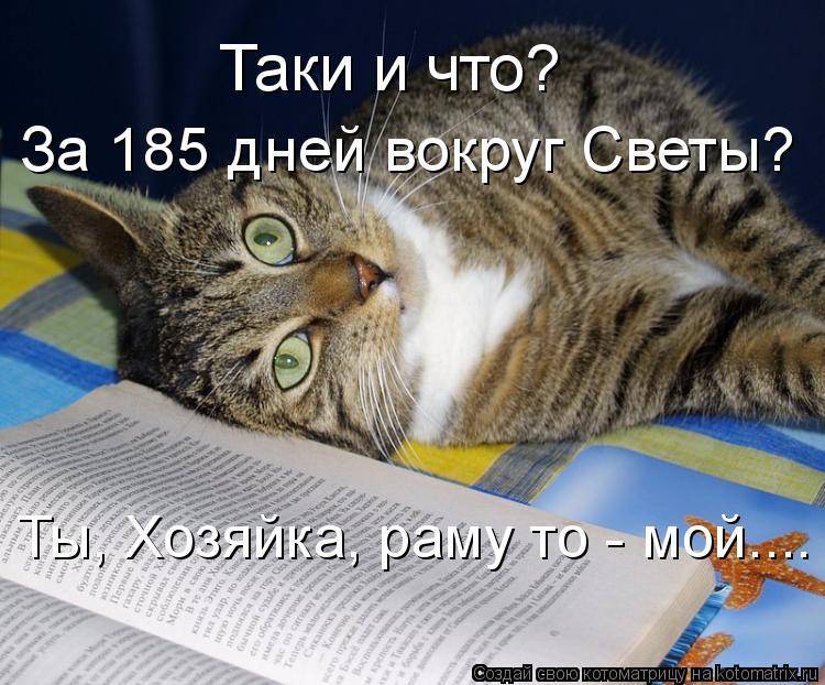 Котоматрица: Таки и что? За 185 дней вокруг Светы? Ты, Хозяйка, раму то - мой....