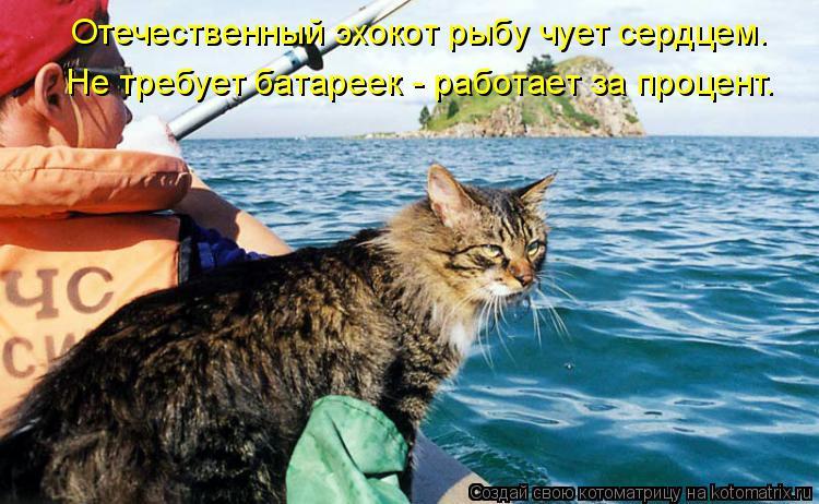 Котоматрица: Отечественный эхокот рыбу чует сердцем. Не требует батареек - работает за процент.